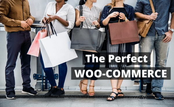 build and design woocommerce website ecommerce store and wordpress website White Label SEO Reseller   Rank Your Website#1 for $199